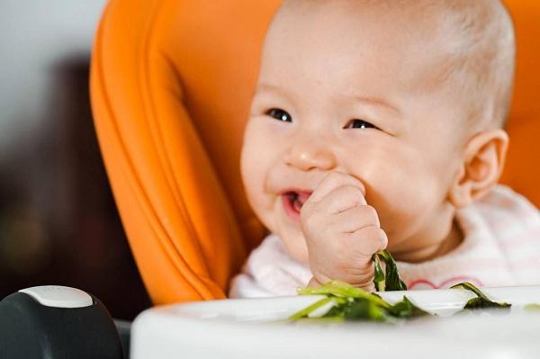 Trẻ mấy tháng tuổi thì ăn được tổ yến sào?